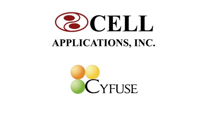 Cell Applications, Cyfuse launch 3D bioprinting method in North America